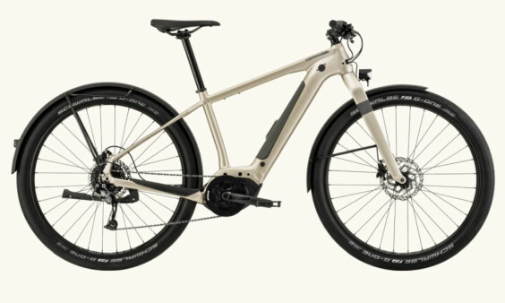 Cannondale 2021 Canvas Neo 2