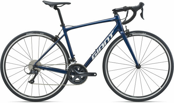 Giant Contend 1 2021