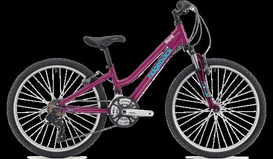 "Ridgeback Destiny 24"" Girls Bike"