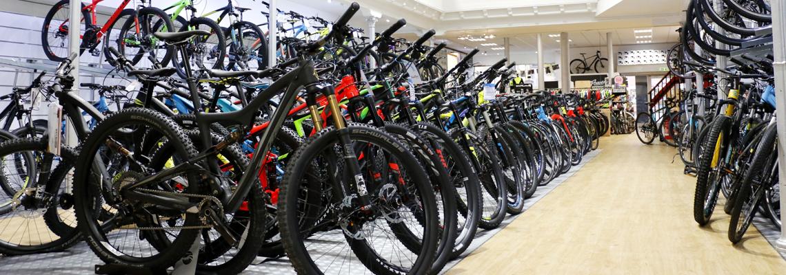 PP bikes.jpg