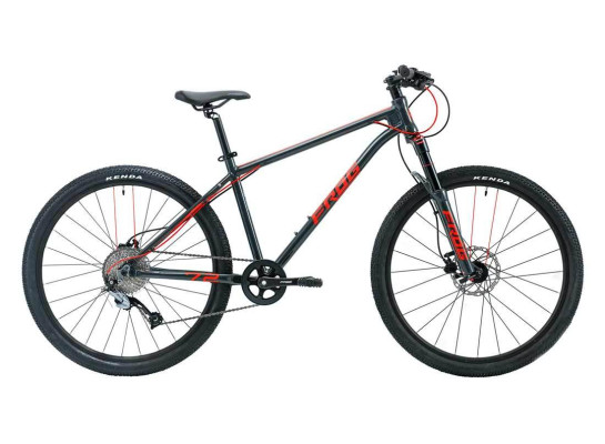 Frog 72 Kids Mountain Bike